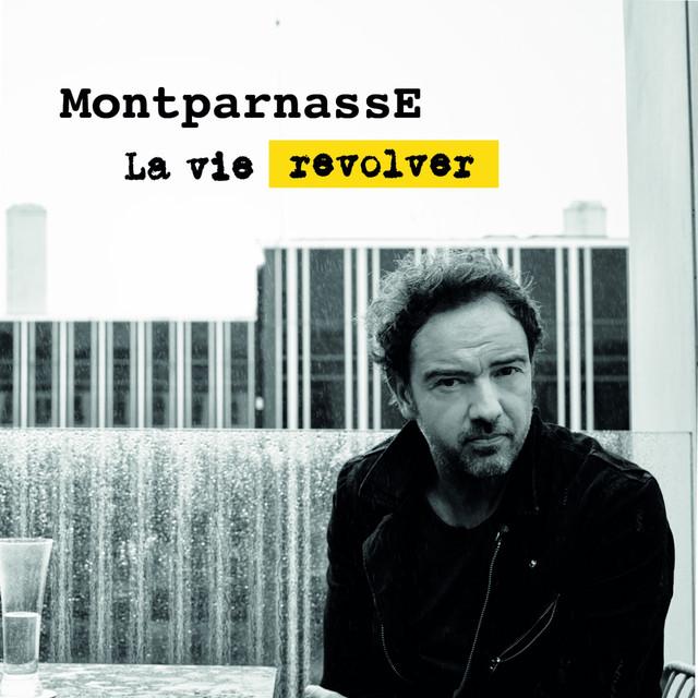 La vie revolver Image