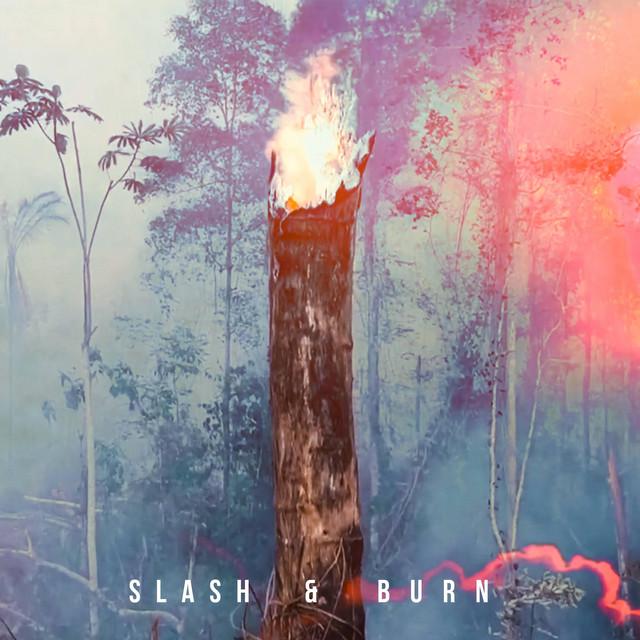 Slash & Burn (feat. MAY BBY) Image