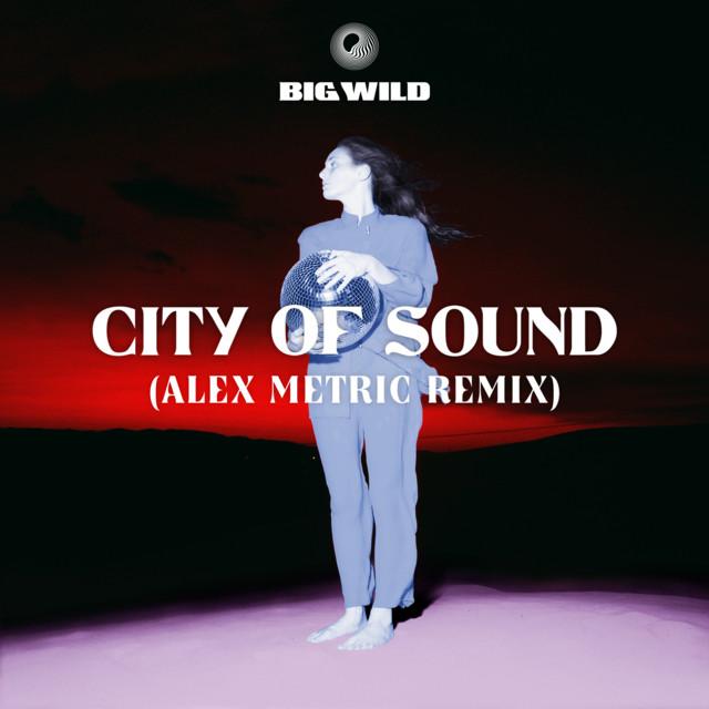 City of Sound (Alex Metric Remix)