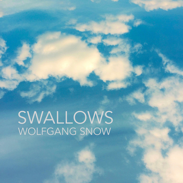 Swallows by Wolfgang Snow on Spotify