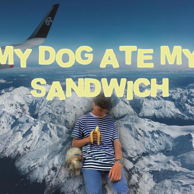 my dog ate my sandwich