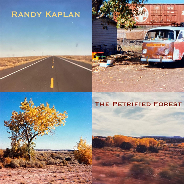 The Petrified Forest by Randy Kaplan