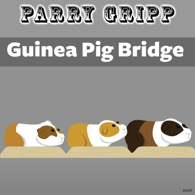 Guinea Pig Bridge by Parry Gripp