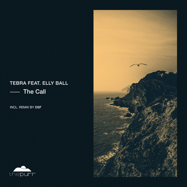 The Call - DSF Remix