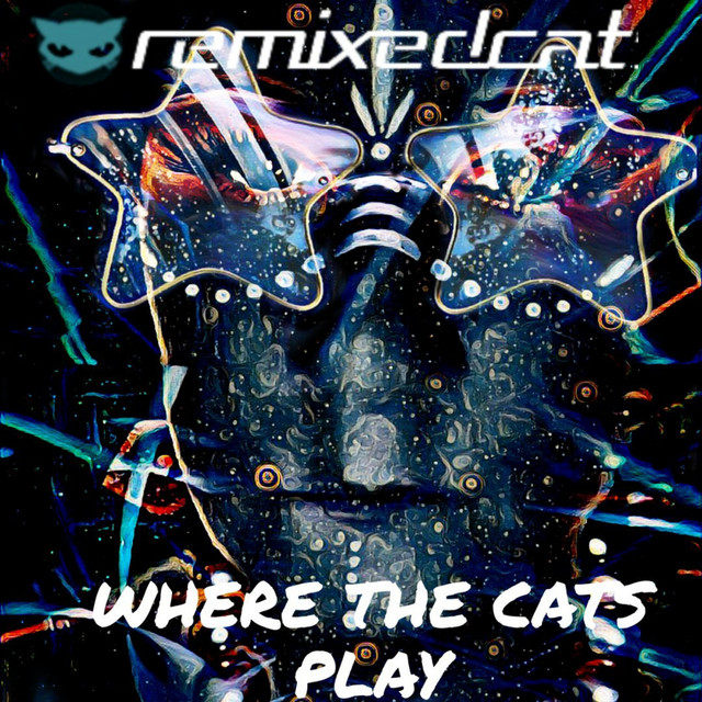 Where the Cats Play