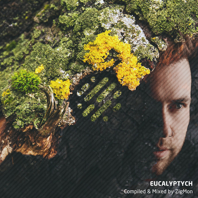 Eucalyptych (DJ Mix)