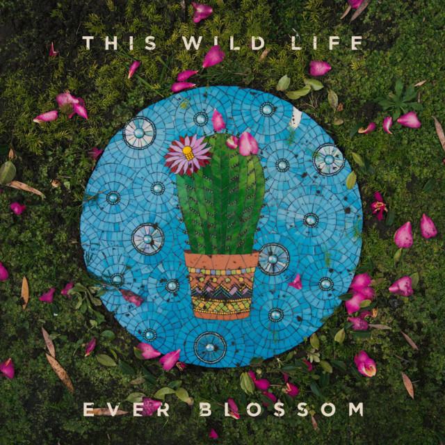 Ever Blossom