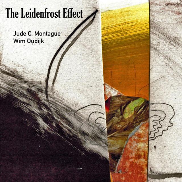 The Leidenfrost Effect