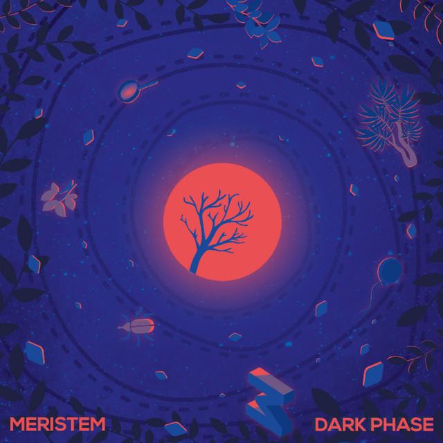 Dark Phase