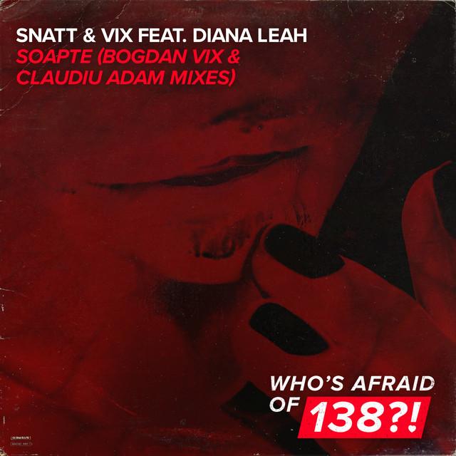 Snatt & Vix feat. Diana Leah - Soapte (Bogdan Vix & Claudiu Adam Remix) Image
