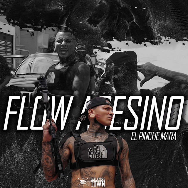 Artwork for Flow Asesino by El Pinche Mara