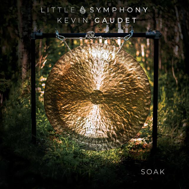 Album cover for Soak by Little Symphony, Kevin Gaudet
