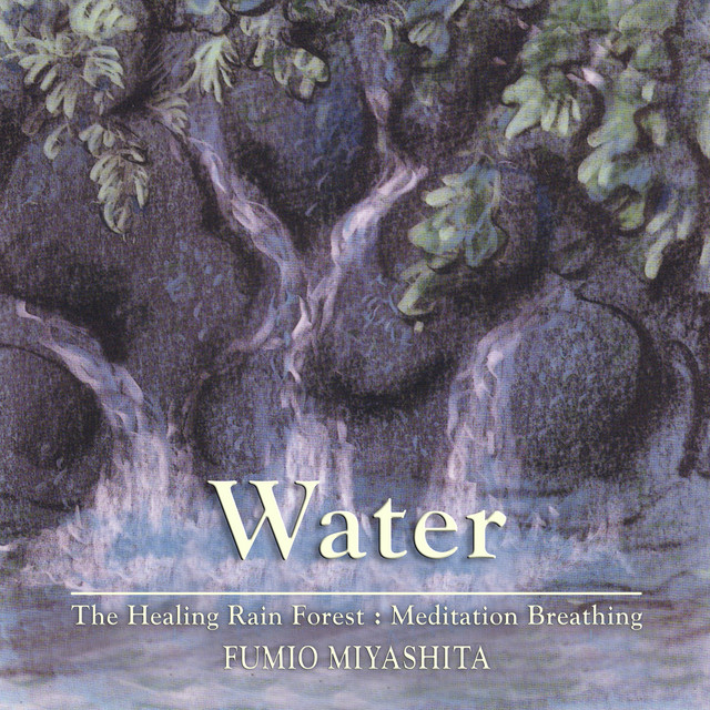 The Healing Rain Forest: Water