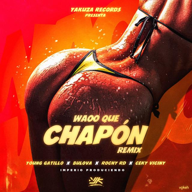 Waoo Que Chapon (Remix)