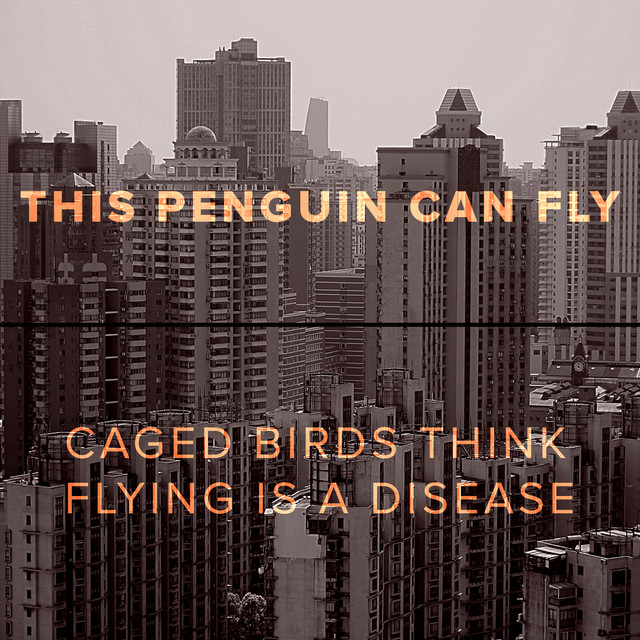 Caged Birds Think Flying Is a Disease