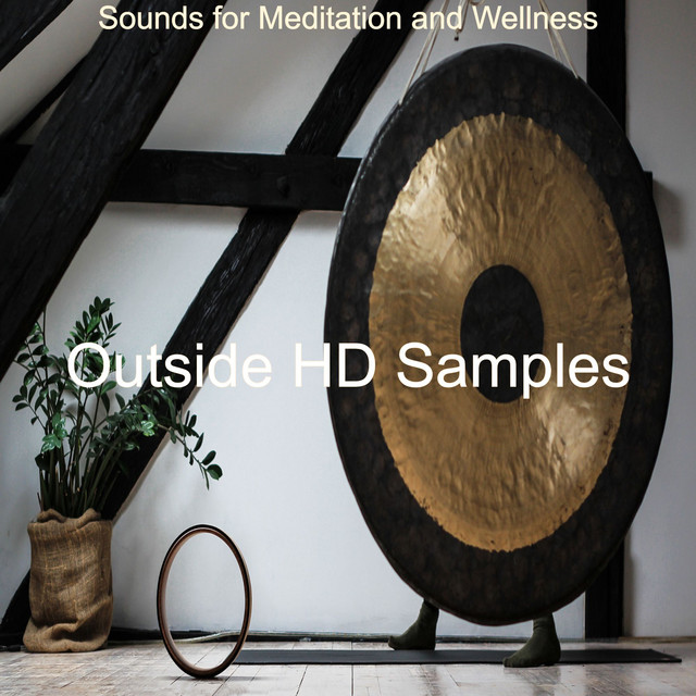 Album cover for Sounds for Meditation and Wellness by Outside HD Samples