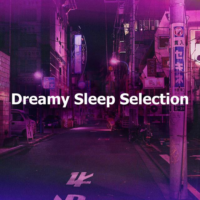 Album cover for Dreamy Sleep Selection by Lofi Sleep Chill & Study