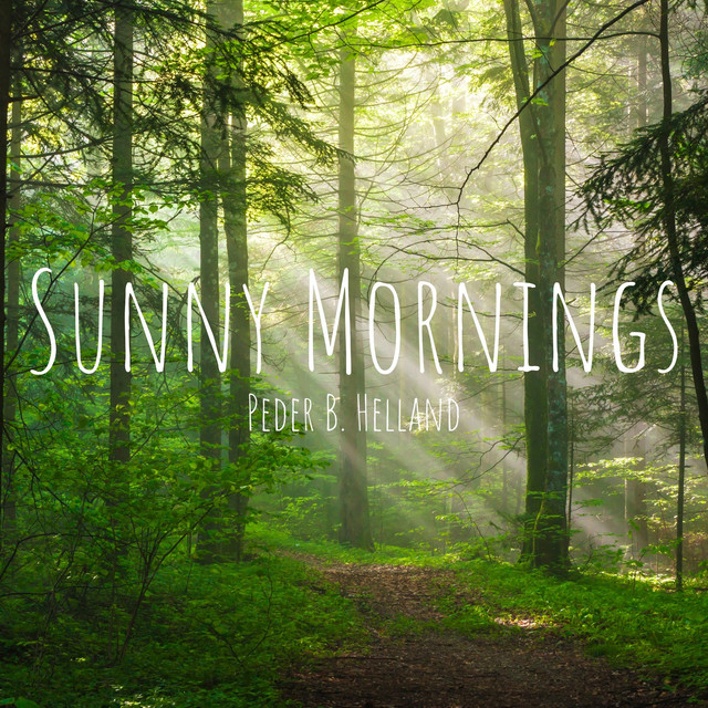 Sunny Mornings