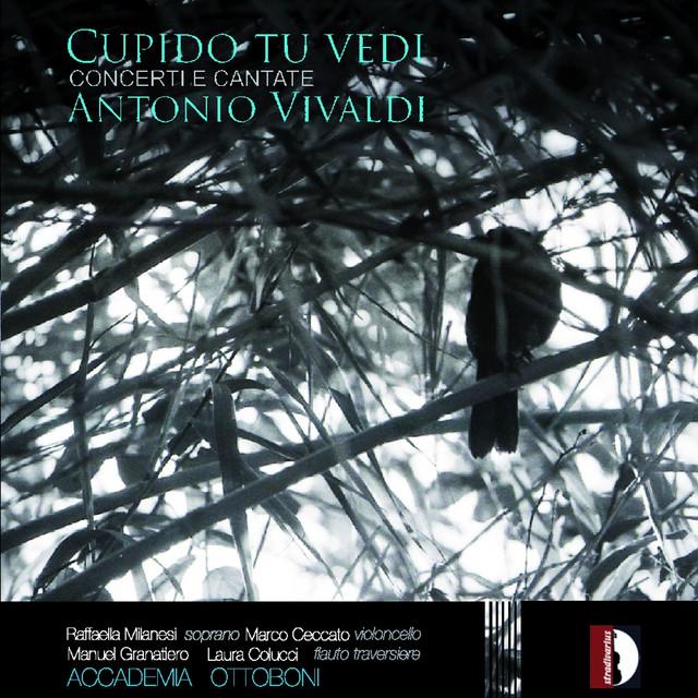 Antonio Vivaldi: Cupido tu vedi