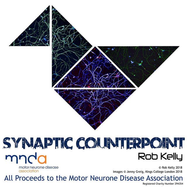 Synaptic Counterpoint