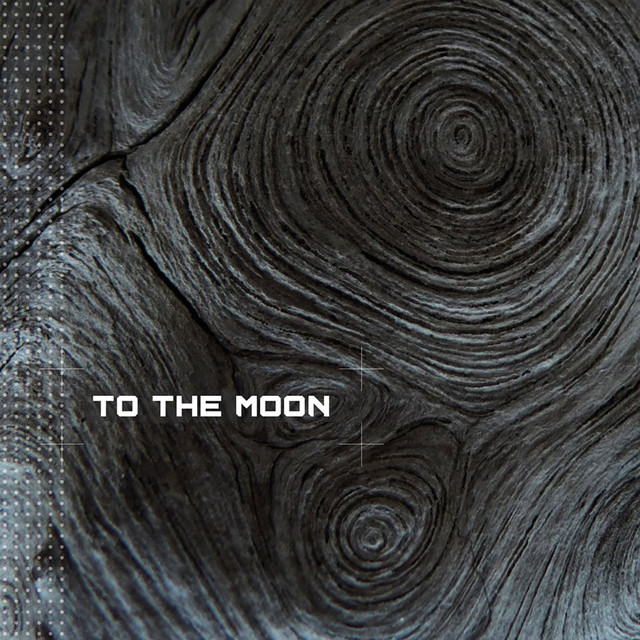 To the Moon Image