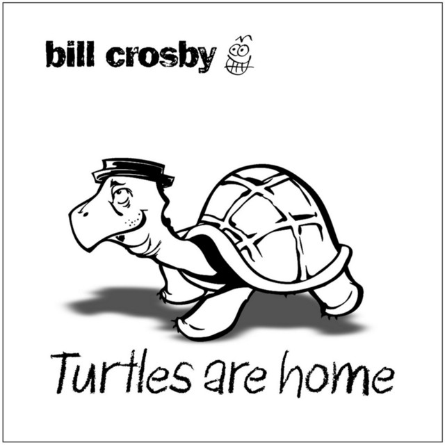 Turtles Are Home by Bill Crosby