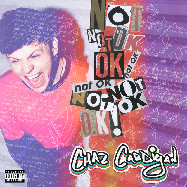 Image result for spotify Chaz Cardigan - Not OK!