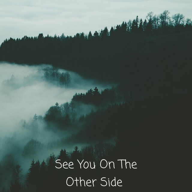 See You On The Other Side Single By Mdk Spotify