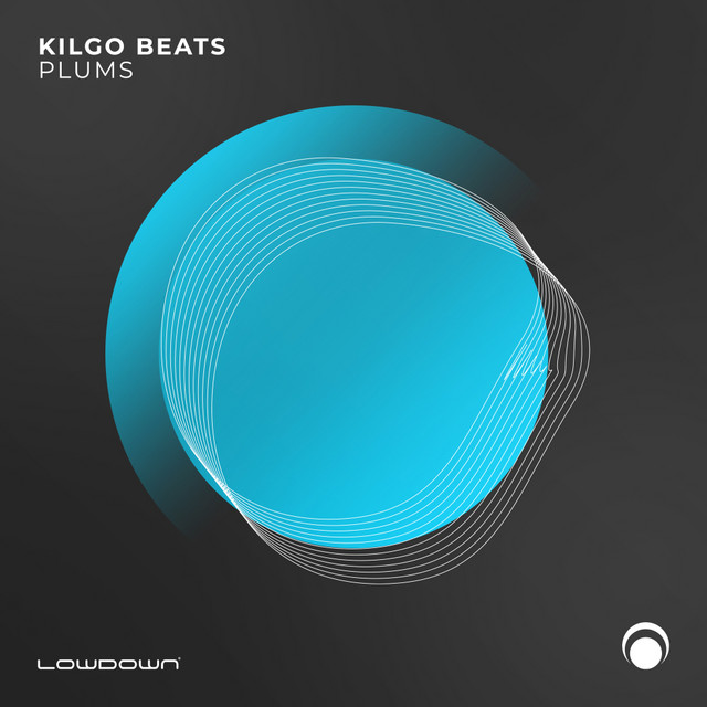 Kilgo Beats - Plums Image