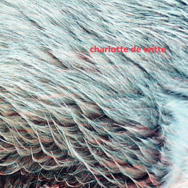 Charlotte de Witte - Vision EP cover