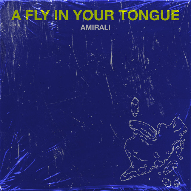 A Fly in Your Tongue