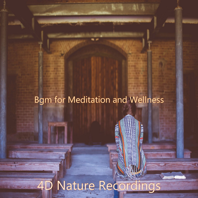 Album cover for Bgm for Meditation and Wellness by 4D Nature Recordings