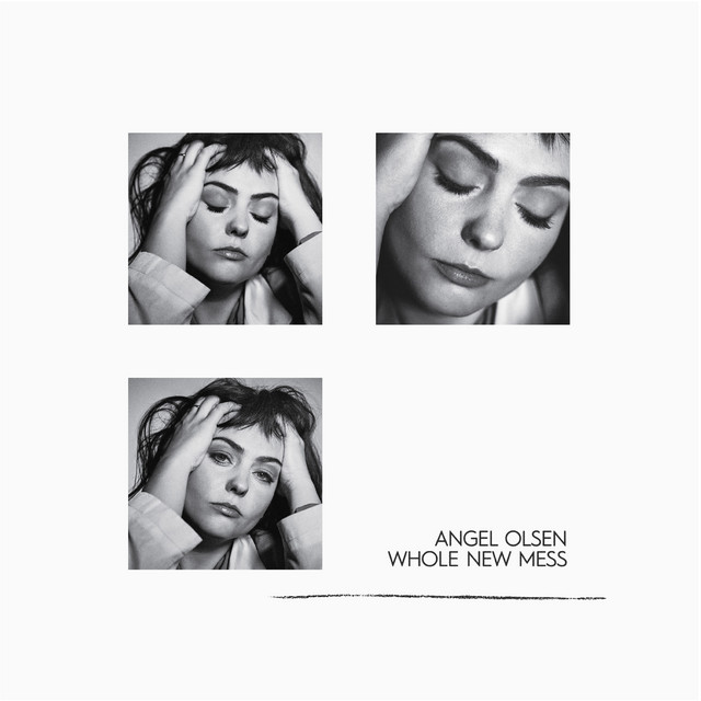 Whole New Mess cover art