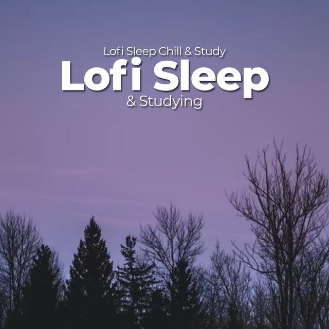 Lofi Sleep & Studying