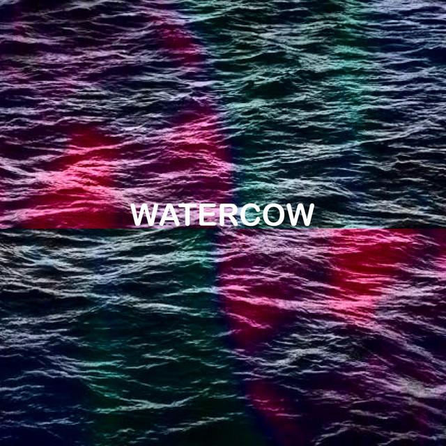 Watercow