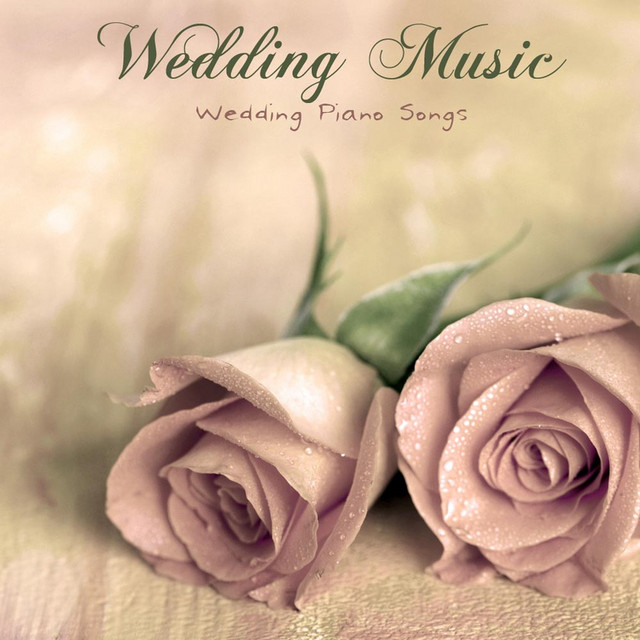 Honeymoon Video Background Music A Song By Wedding Music