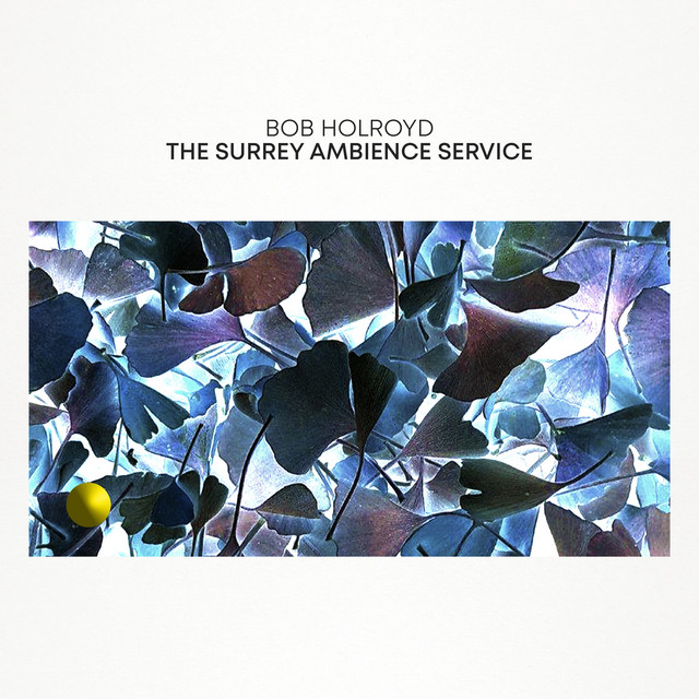 The Surrey Ambience Service