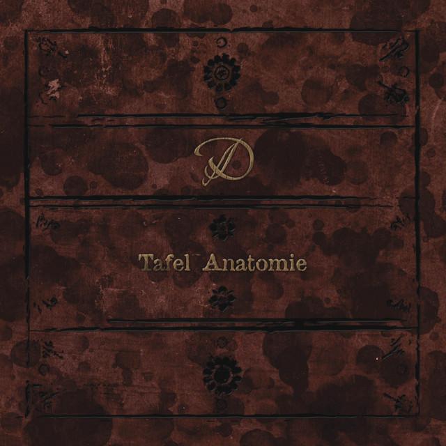 Tafel Anatomie - Album by D | Spotify