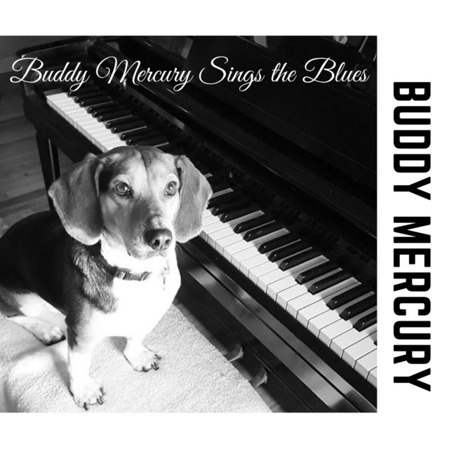 Buddy Mercury Sings the Blues