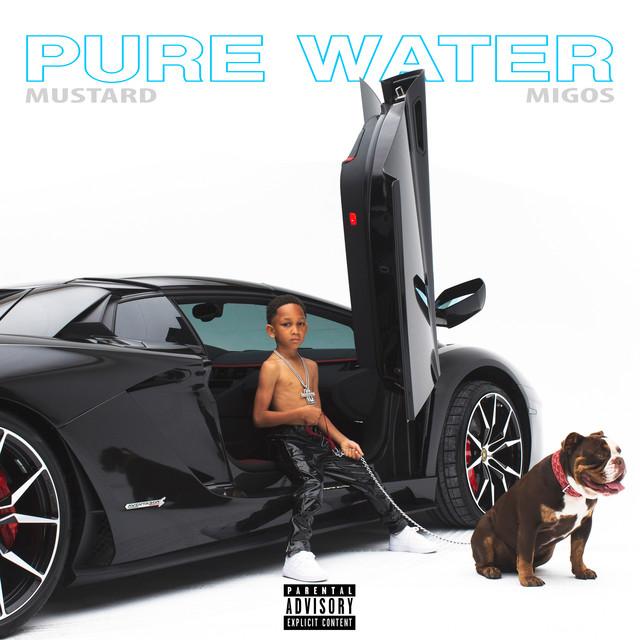 """Résultat de recherche d'images pour """"spotify Pure Water (Feat. Migos)"""""""