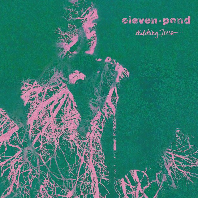 Eleven Pond
