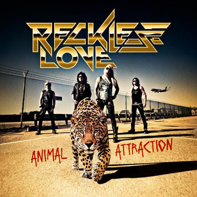 Animal Attraction