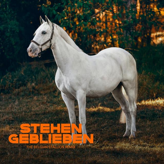 Stehen geblieben - The Belgian Stallion Remix