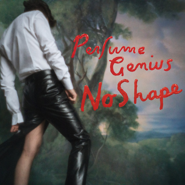 Artwork for Otherside by Perfume Genius