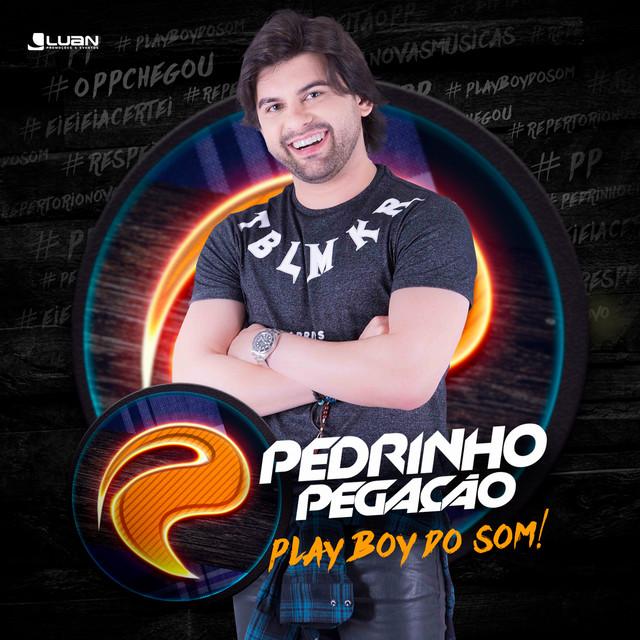 Playboy do Som - Single (Ao Vivo)