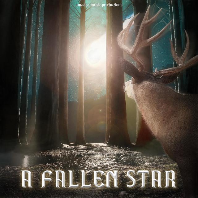 A Fallen Star Image