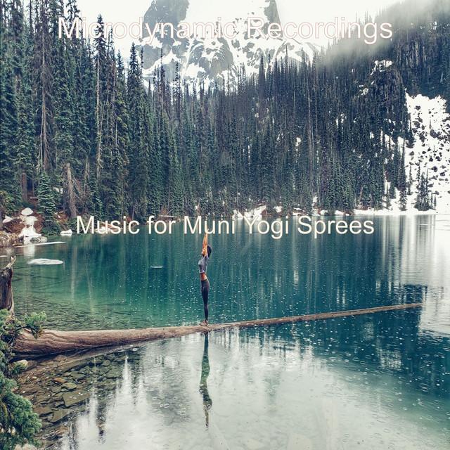 Album cover for Music for Muni Yogi Sprees by Microdynamic Recordings