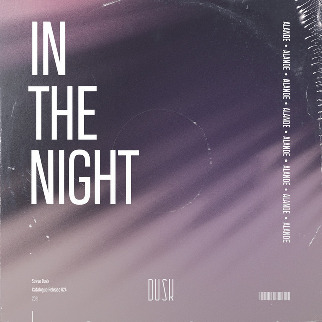 In The Night Image