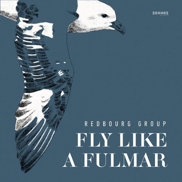 Fly Like a Fulmar