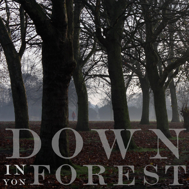 Down in Yon Forest